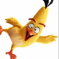 Chuck (Angry Birds Toons)