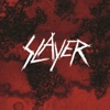 Beauty Through Order - Slayer