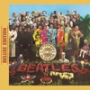 Within You Without You - Sgt Pepper's Lonely Hearts Club Band