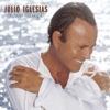 When You Tell Me That You Love Me - Julio Iglesias