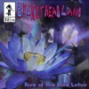 Rise of the Blue Lotus