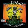 Gone Away - Offspring