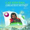 Peace Train - Cat Stevens