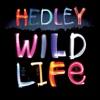 Heaven In Our Headlights - Hedley