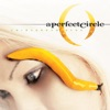The Noose - A Perfect Circle
