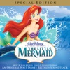 Part of Your World - The Little Mermaid
