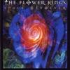 I Am the Sun, Pt. 1 - The Flower Kings
