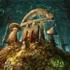 Nerd On Mushrooms