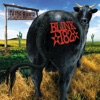I'm Sorry - Dude Ranch