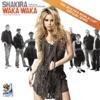 Waka Waka (This Time for Africa) - Shakira