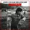 Rain on the Scarecrow - John Mellencamp