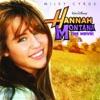 The Climb - Miley Cyrus