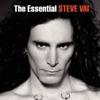 Tender Surrender - Steve Vai