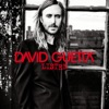 What I Did for Love - David Guetta