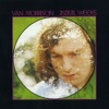 The Way Young Lovers Do - Van Morrison