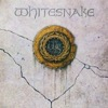 Crying In the Rain - Whitesnake