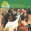 Wouldn't It Be Nice? - The Beach Boys