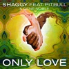 Only Love - Shaggy
