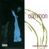 I Used To Love H.E.R. - Common