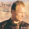 Desert Rose - Sting and Cheb Mami