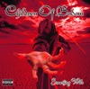 In the Shadow - Children of Bodom