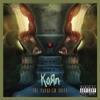 Never Never - Korn (TLC 2013) Cover Art