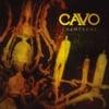 Champagne - Cavo
