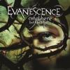 Farther Away - Evanescence