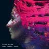 Ancestral - Steven Wilson