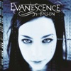 Imaginary - Evanescence