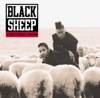 The Choice Is Yours - Black Sheep