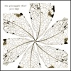 Remember Us - The Pineapple Thief