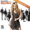 Waka Waka (This Time for Africa) - Shakira