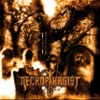 Symbiotic in Theory - Necrophagist