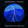 This is What You Came For - Calvin Harris
