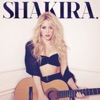 Can't Remember to Forget You - Shakira