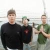 Not Now - Blink-182