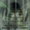 Asylum of Glass