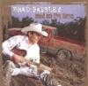Whisky Lullaby - Brad Paisley