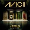 Levels - Avicii (Skrillex Remix)