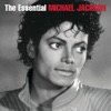 Don't Stop Til You Get Enough - Michael Jackson