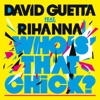 Who's That Chick? (Afrojack Remix)