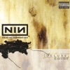 The Downward Spiral (The Bottom) - Nine Inch Nails