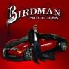 Money to Blow - Birdman, Lil Wayne & Drake