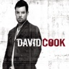 Avalanche - David Cook