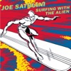 Surfing with the Alien - Joe Satriani