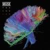 Survival - Muse