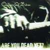 If You Want Peace...Prepare for War - Children of Bodom