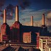 Sheep - Pink Floyd