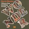 Never Dreamed You'd Leave in Summer - Stevie Wonder